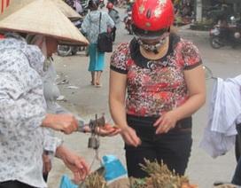Quả vải Trung Quốc xâm nhập ngược vào Việt Nam