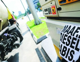 Vì sao giá xăng ở Việt Nam cao gấp đôi Malaysia?