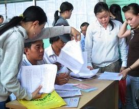 Hợp đồng mùa vụ cũng được hưởng trợ cấp thất nghiệp