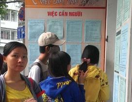 TP.HCM: tỉ lệ đăng ký thất nghiệp giảm 6%