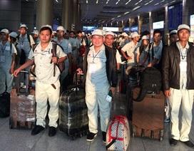 Xuất khẩu lao động năm 2014: Bức tranh tương phản