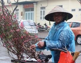 Mưu sinh trong mưa rét ngày giáp Tết