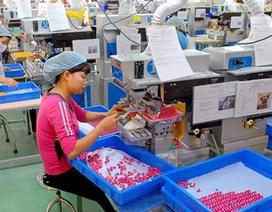 Hàn Quốc đề nghị được sa thải lao động Việt Nam khai man năng lực