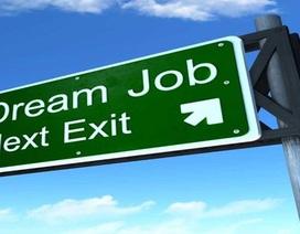 """Lý do nhân viên từ bỏ các """"công việc trong mơ"""""""