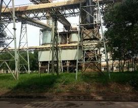 Lãnh đạo công ty xi măng tử nạn khi kiểm tra dây chuyền sản xuất