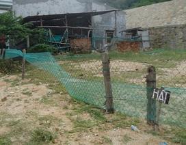 Bình Định: Nhiều hộ dân ngang nhiên chiếm đất tái định cư