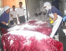 Cá ngừ Việt Nam xuất Nhật tạm ngưng do chưa đạt chuẩn