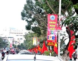 Cờ Tổ quốc đỏ rực đường phố chào năm mới