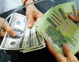 Giao dịch 100 USD bị phạt 50 triệu đồng