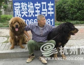 Giao dịch lạ: Đổi 2 con chó lấy một chiếc BMW