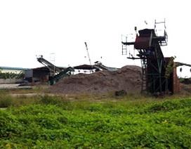 Phá sản vì bán gỗ dăm cho Trung Quốc