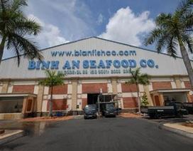 Bị ngân hàng ép, Bianfishco lại tính phá sản