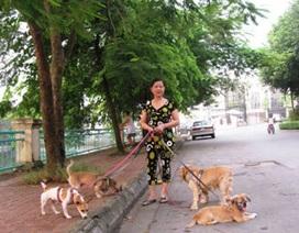Dắt chó đi dạo, lương hơn 6 triệu/tháng