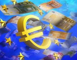 Xin vào châu Âu bất chấp khủng hoảng