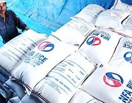 Thái Lan giảm giá thu mua tạm trữ gạo: Việt Nam không ảnh hưởng