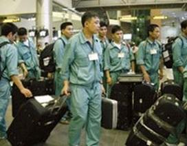 Ký Quỹ 100 triệu đồng với lao động sang Hàn Quốc làm việc