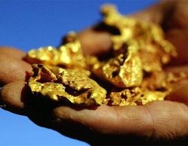Chưa thể quyết tăng thuế tài nguyên đối với vàng