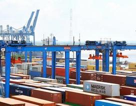 """Vinashin, Vinalines """"quên"""" gần 200 container tại cảng"""