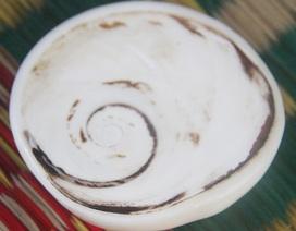 Choáng với vỏ ốc xà cừ có giá hàng chục triệu đồng ở Lý Sơn