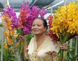 Trồng hoa lan cắt cành thu nhập 500 triệu đồng mỗi ha