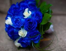 """""""Vớ bạc"""" nhờ nhuộm xanh hoa hồng, bán cho tình nhân"""