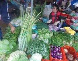 """Hà Nội: Tết tan, giá rau xanh đua nhau """"phi mã"""""""