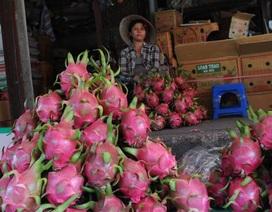 Hàng Trung Quốc về chợ giảm