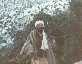 Câu chuyện đằng sau các bức ảnh hiếm về Osama bin Laden