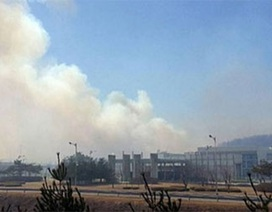Bùng phát hỏa hoạn ở khu vực phi quân sự liên Triều DMZ