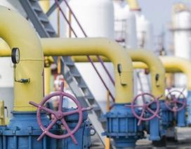 Ukraine tuyên bố ngừng mua khí đốt của Nga