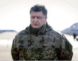 Tổng thống Ukraine ký luật trao quy chế đặc biệt cho miền Đông