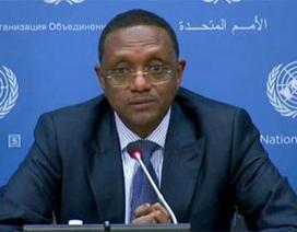 Phái viên Liên hợp quốc: Boko Haram còn nguy hiểm hơn cả IS