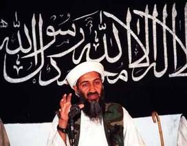 CIA đã nói dối về vụ bin Laden như thế nào
