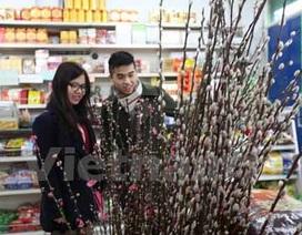 Người Việt tại London vui sắm Tết Nguyên đán Ất Mùi 2015