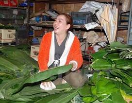 Tết Việt cổ truyền rộn rã Vientiane, ấm lòng những người con xa xứ
