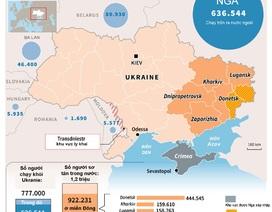 [ĐỒ HOẠ] Liên Hợp Quốc mới nhận được 9% tiền viện trợ cho Ukraine
