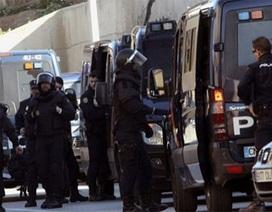 Bulgaria, Tây Ban Nha, Áo bắt nhiều đối tượng dính líu tới khủng bố