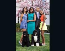 Khoảnh khắc gia đình Obama hạnh phúc trong Lễ Phục sinh