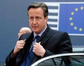Anh - EU: Bên nào sẽ phải xuống thang?