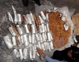 Singapore thu giữ gần 4 tấn ngà voi quá cảnh đến Việt Nam