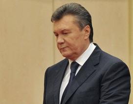 """Tổng thống Ukraine """"thách"""" ông Yanukovych về nước chứng minh """"vô tội"""""""
