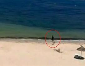 Video mới về vụ thảm sát tại Tunisia