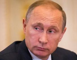 Tổng thống Putin: Nga không phải là nguồn cơn khủng hoảng Ukraine