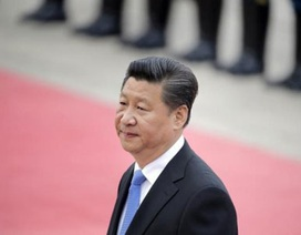 """Chủ tịch Trung Quốc thăm khu vực """"nhạy cảm"""" giáp biên giới Triều Tiên"""
