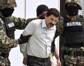 Trùm ma túy Mexico vượt ngục như phim Mỹ
