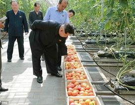 Ám ảnh ngộ độc, ông Kim Jong-un bắt soi rau bằng kính hiển vi