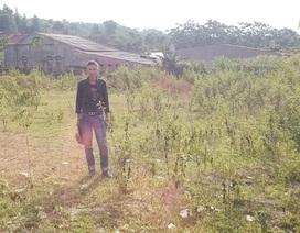 """Lào Cai: """"Khoanh vùng"""" thiệt hại vụ công dân không biết chữ """"tố"""" bị giả chữ ký"""