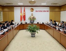 Xét cơ chế đặc thù làm nhà máy điện hạt nhân Ninh Thuận