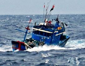 Tiếp tục tìm kiếm 8 thuyền viên mất tích vụ 2 tàu hàng va nhau