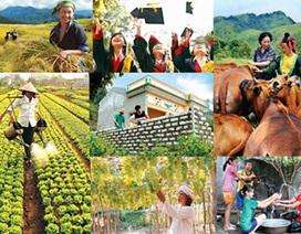 Xác định mục tiêu 20% xã đạt chuẩn nông thôn mới trong năm 2015